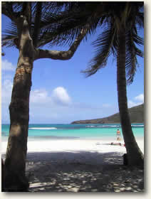 Spanish Virgin Islands Vieques Beach Puerto Rico Yacht Charter Destinations