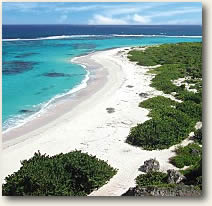 Sandy Barbuda Beach Antigua Sailing Charter Itinerary