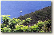 Dutch Antilles Caribbean Sailing Itinerary
